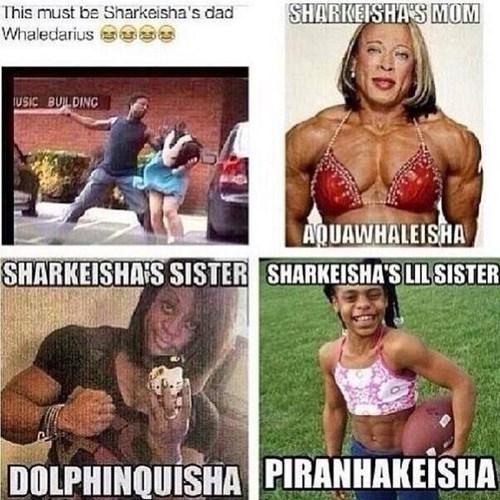 puns names Sharkeisha - 7929414144