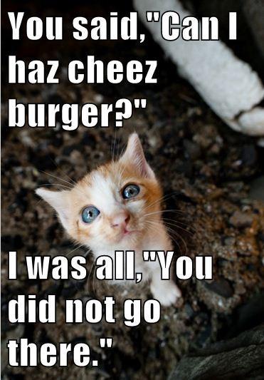 Cheezburger Image 7929693440