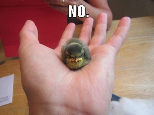 Hand - NO.