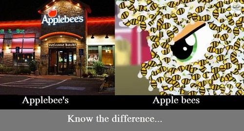 bees,applejack,applebees,know the difference