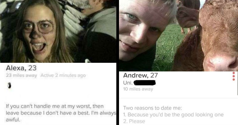 tinder profiles that make a case for being single