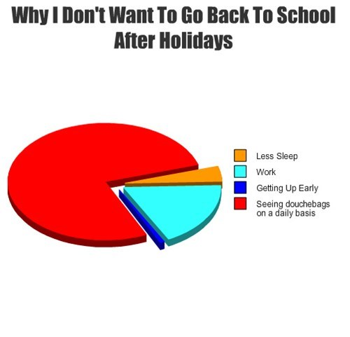 Pie Chart,school,dbags