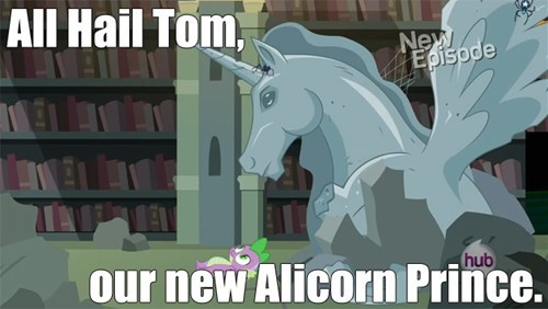 alicorn,tom,he rocks