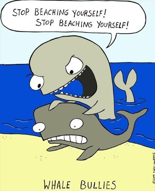 comics bullies funny whales toons - 7933181696