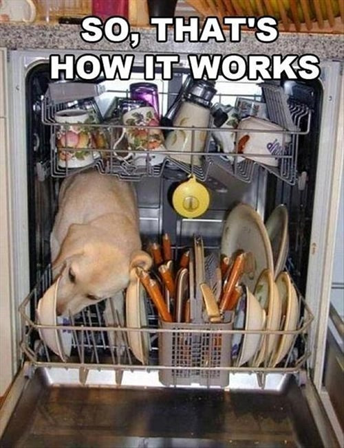 dishwasher dogs funny The Flintstones