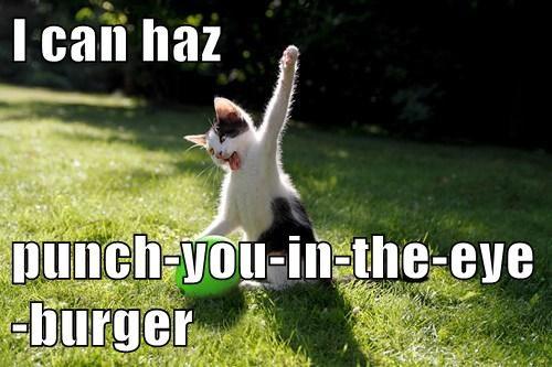Cheezburger Image 7934361088