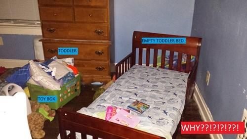 parenting toddlers sleeping - 7934396160
