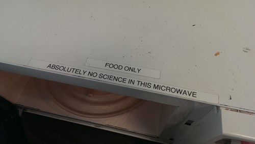 microwaves,science,food only,g rated,monday thru friday