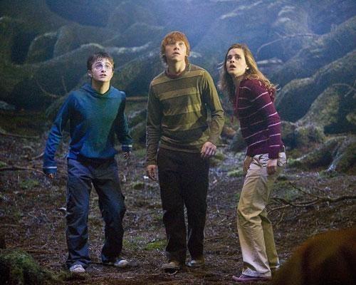 Harry Potter Genetics science biology funny - 7934561280