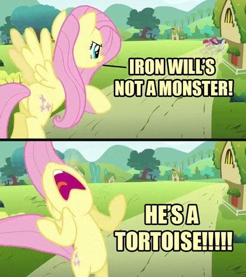 it's a tortoise iron will fluttershy oldie - 7934825472