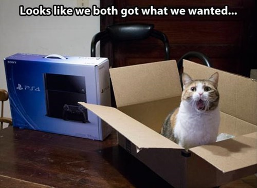 playstation,box,gift,PlayStation 4,Cats