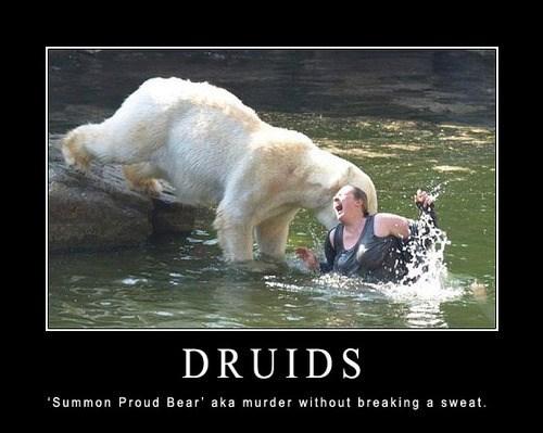 bears d&d druids funny - 7934888704