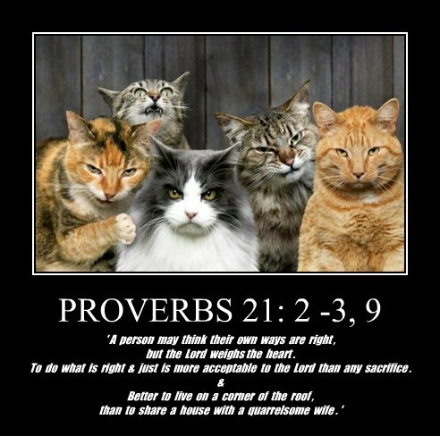 PROVERBS 21: 2 -3, 9 ' A person may think their own ways are right , but the Lord weighs the heart . To do what is right & just is more acceptable to the Lord than any sacrifice . & Better to live on a corner of the roof , than to share a house with a quarrelsome wife . '