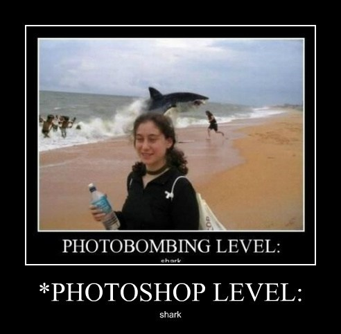 photobomb shark level up funny - 7935028480
