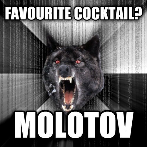 advice animals Insanity Wolf Memes molotov cocktails - 7936340480