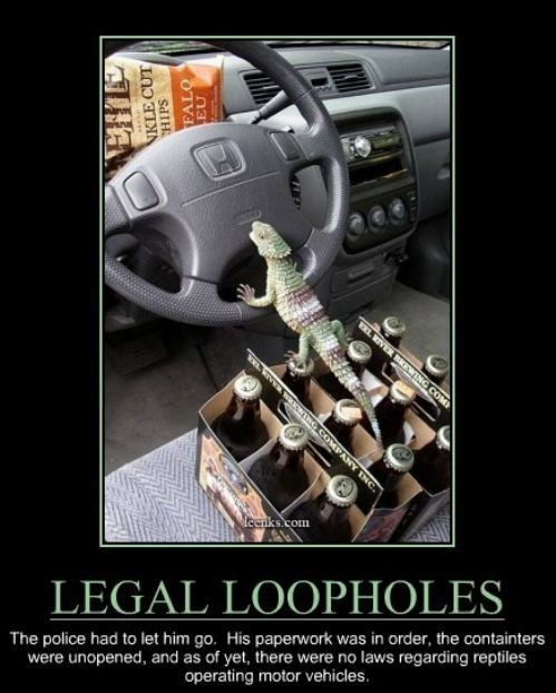 driving,loopholes,funny,lizards