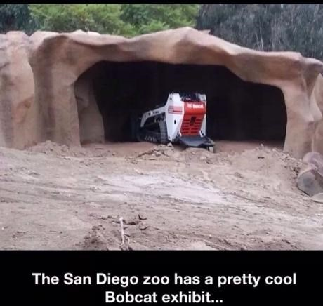 animals,whoops,zoo,fail nation,g rated