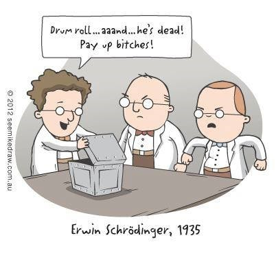 comics,erwin schrodinger,funny,science