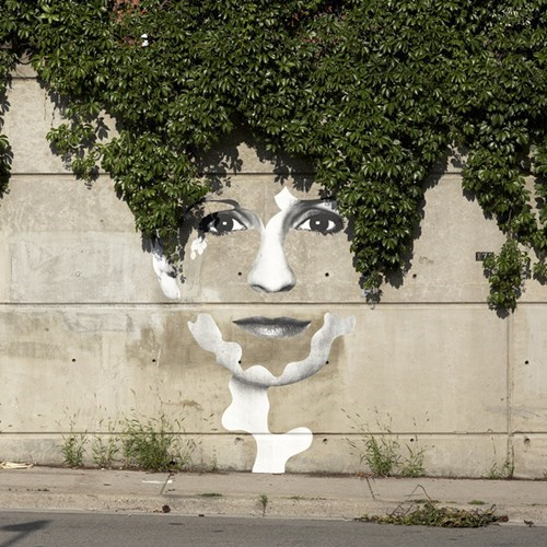 Street Art,shrubs,hacked irl