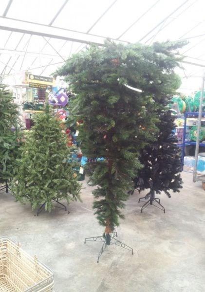 christmas,christmas tree,almost