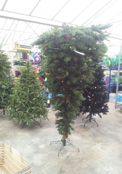 christmas christmas tree - 7937018368
