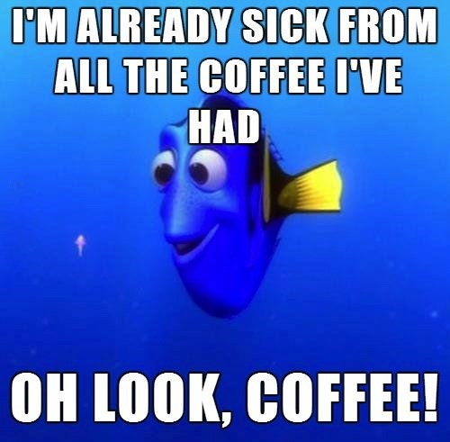 Memes,coffee,finding nemo