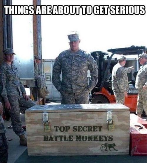 monkeys war military america - 7937044736