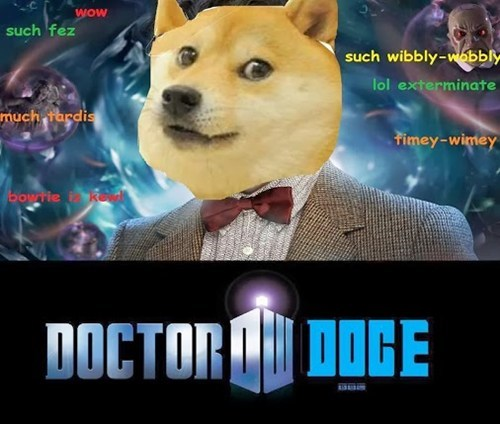 doctor who doge - 7937476864