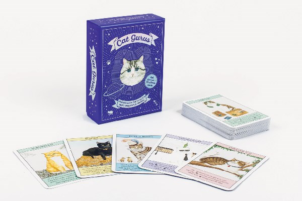 cards inspirational card game Cats - 7937797