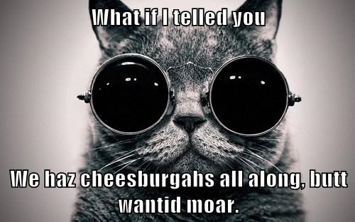 What if I telled you We haz cheesburgahs all along, butt wantid moar.