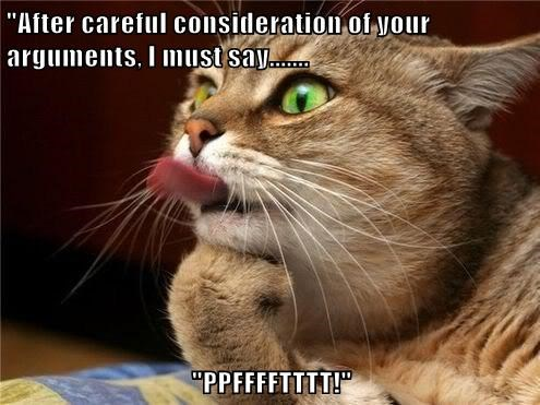 argument Cats funny tongue - 7938192896