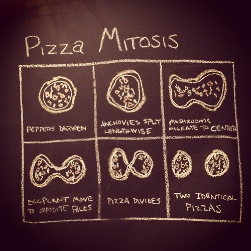 Chart science pizza