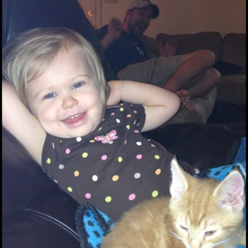 photobomb,kids,family photos,Cats