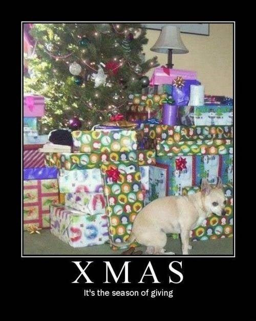 dogs christmas funny pooping - 7939547392