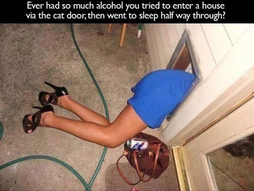 doggy door drunk funny sneaking passed out - 7939559168