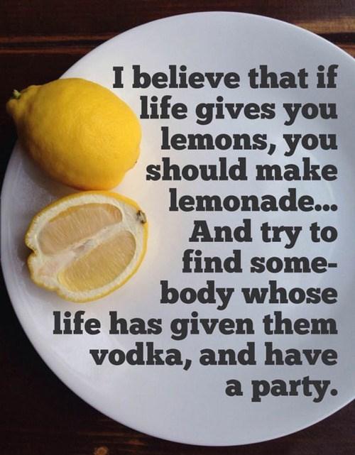 drinking lemonade lemons vodka - 7939733504