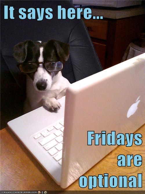 computers dogs fridays funny work - 7940840960