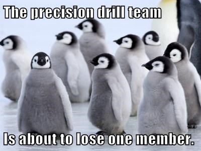 penguins,drill team,precision,mistake,funny