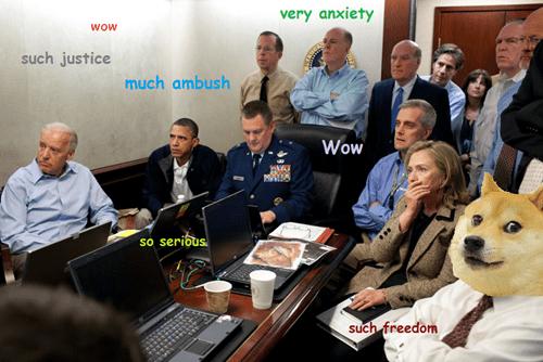 Memes obama shibe doge - 7941006848