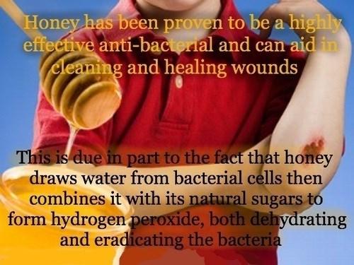 medicine honey science funny - 7941512960