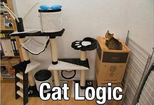 cat tree logic Cats funny - 7941653504