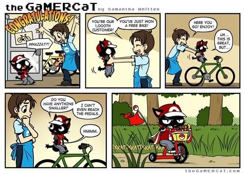 Pokémon web comics the gamer cat