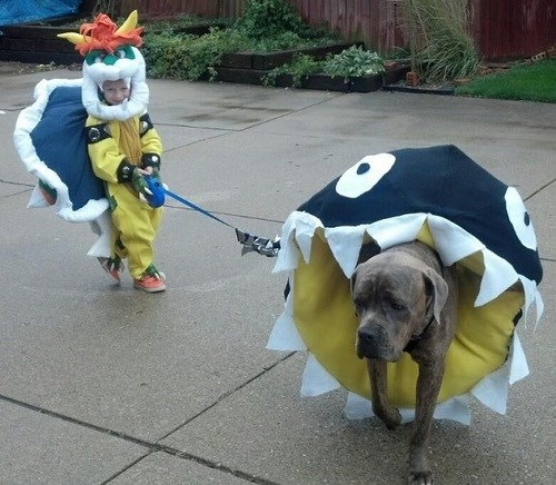costume,dogs,bowser,chain chomp,kids,parenting