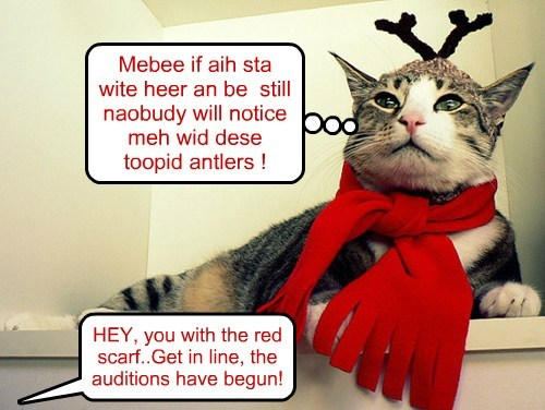 Mebee if aih sta wite heer an be still naobudy will notice meh wid dese toopid antlers ! HEY, you with the red scarf..Get in line, the auditions have begun!