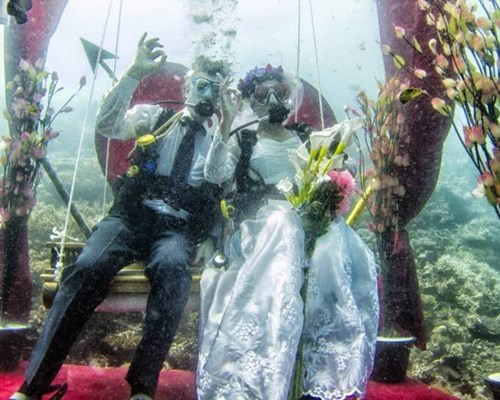 diving,scuba,wedding