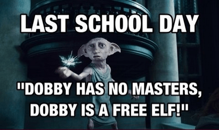 Harry Potter Dobby funny free g rated School of FAIL - 7946616064