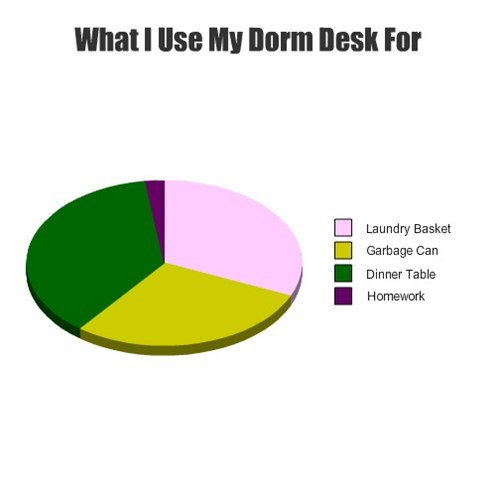desk college Pie Chart student life