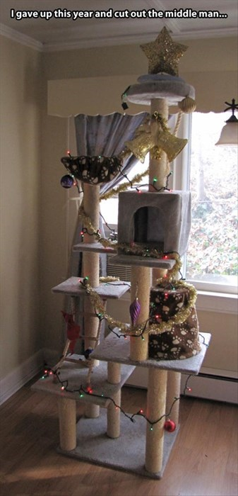 cat tree,Cats,christmas,christmas tree,funny,surrender