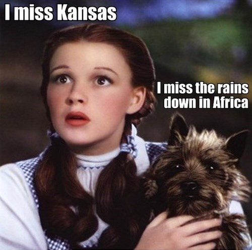 Kansas toto wizard of oz