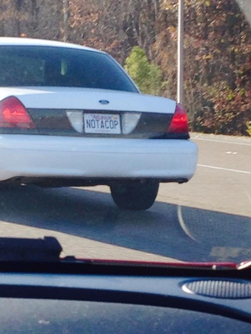 cars cops license plate